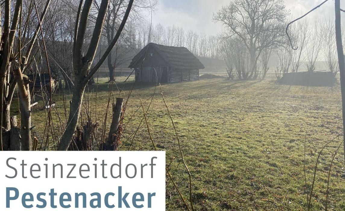 Steinzeitdorf Pestenacker
